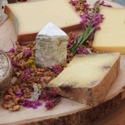 Plateau de fromages de Savoie